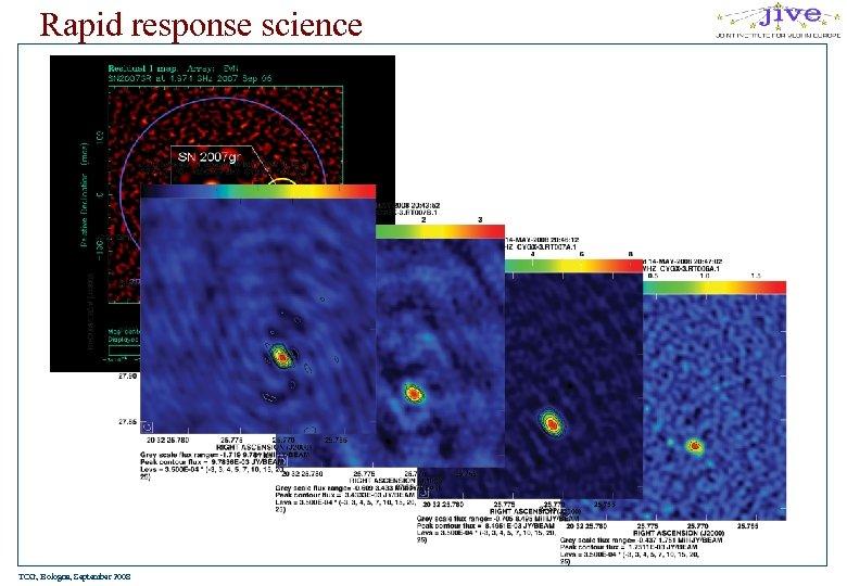 Rapid response science TOG, Bologna, September 2008