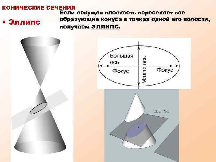 КОНИЧЕСКИЕ СЕЧЕНИЯ Если секущая плоскость пересекает все образующие конуса в точках одной его полости,
