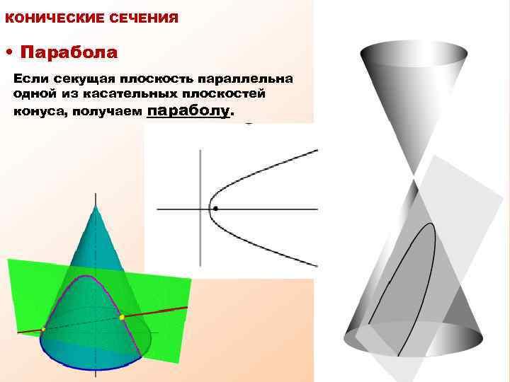 КОНИЧЕСКИЕ СЕЧЕНИЯ • Парабола Если секущая плоскость параллельна одной из касательных плоскостей конуса, получаем
