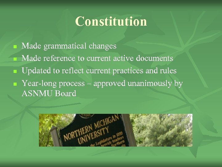 Constitution n n Made grammatical changes Made reference to current active documents Updated to