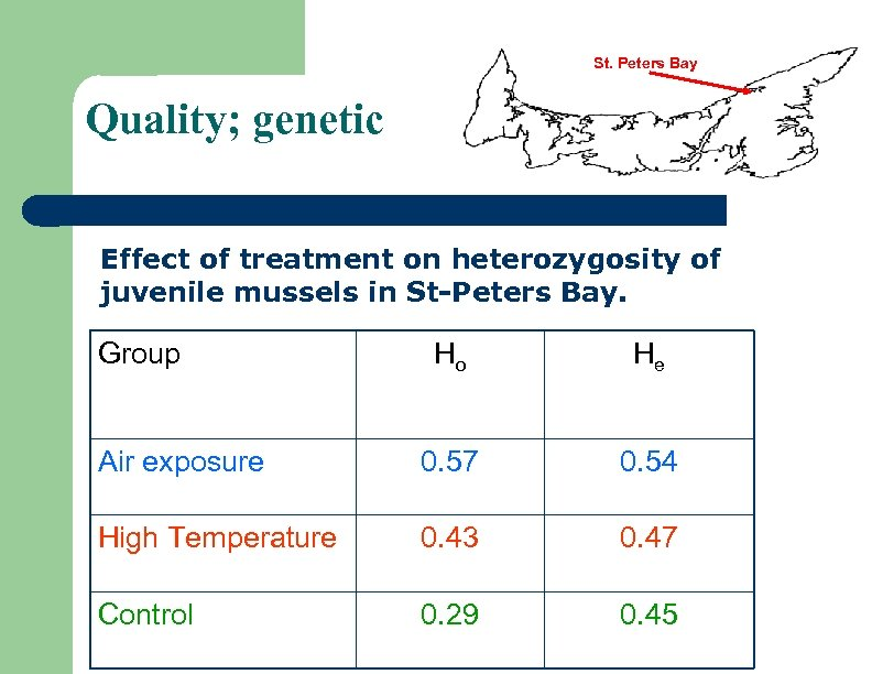 St. Peters Bay Quality; genetic Effect of treatment on heterozygosity of juvenile mussels in