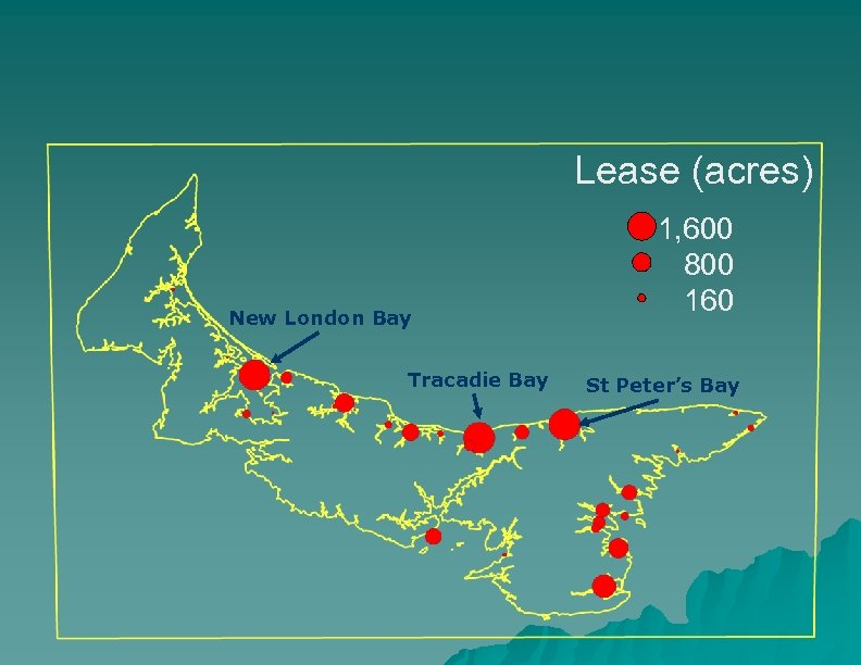 Lease (acres) New London Bay Tracadie Bay 1, 600 800 160 St Peter's Bay