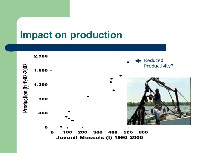 Impact on production Reduced Productivity?