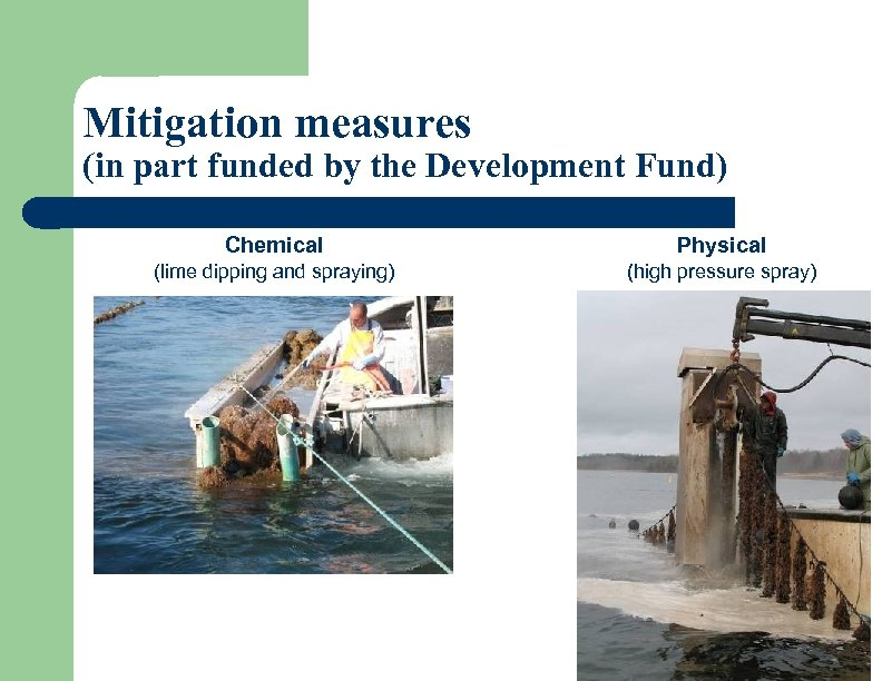 Mitigation measures (in part funded by the Development Fund) Chemical Physical (lime dipping and