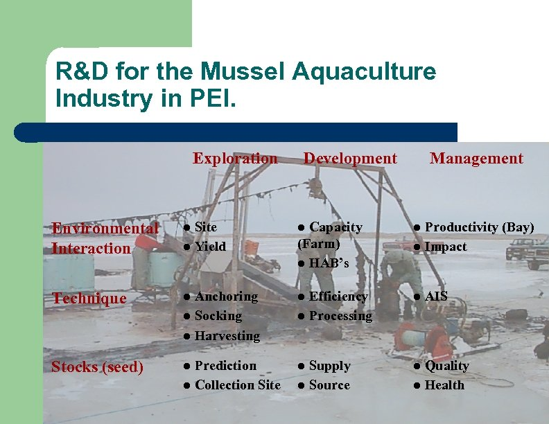 R&D for the Mussel Aquaculture Industry in PEI. Exploration Development Management Environmental Interaction l