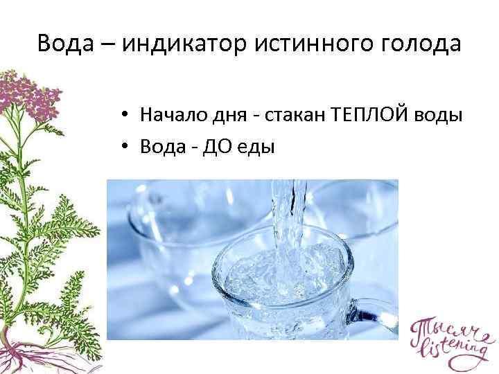Вода – индикатор истинного голода • Начало дня - стакан ТЕПЛОЙ воды • Вода