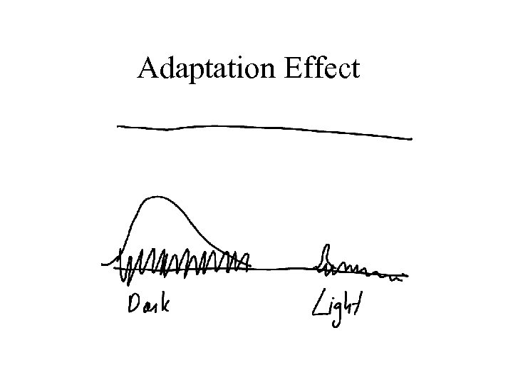 Adaptation Effect