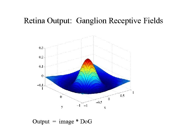 Retina Output: Ganglion Receptive Fields Output = image * Do. G