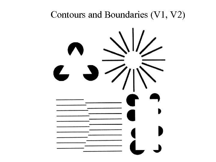 Contours and Boundaries (V 1, V 2)