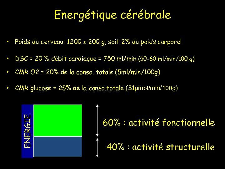 Energétique cérébrale • Poids du cerveau: 1200 ± 200 g, soit 2% du poids