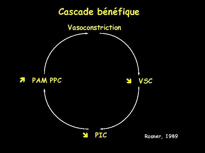 Cascade bénéfique Vasoconstriction PAM PPC PIC VSC Rosner, 1989