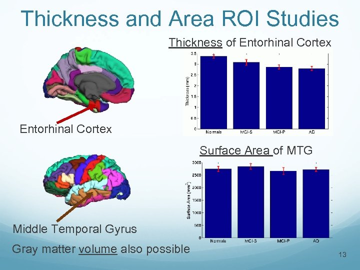 Thickness and Area ROI Studies Thickness of Entorhinal Cortex Surface Area of MTG Middle