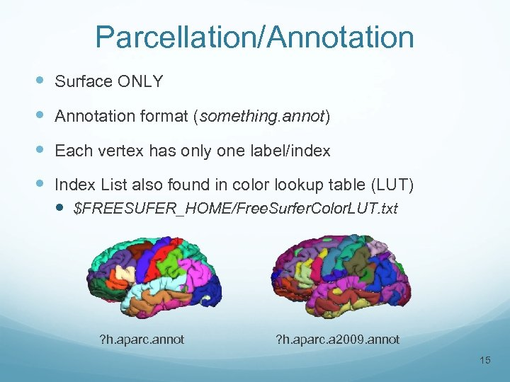 Parcellation/Annotation Surface ONLY Annotation format (something. annot) Each vertex has only one label/index Index