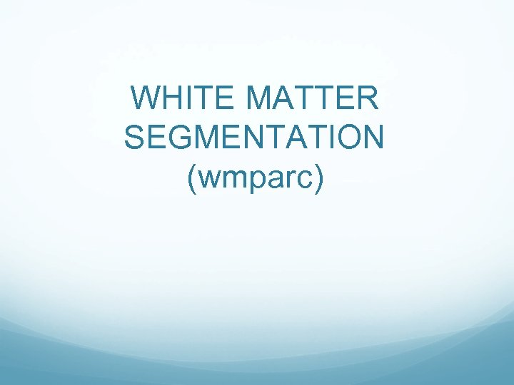 WHITE MATTER SEGMENTATION (wmparc)