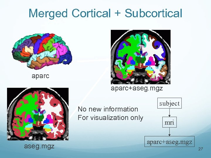 Merged Cortical + Subcortical aparc+aseg. mgz No new information For visualization only aseg. mgz