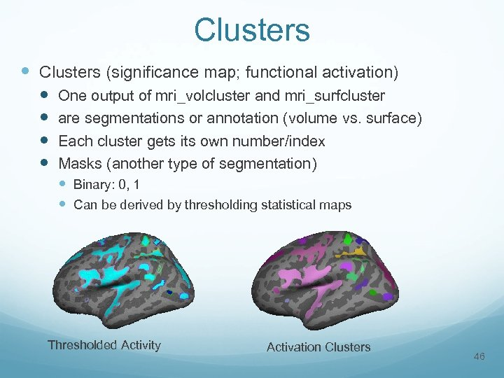 Clusters (significance map; functional activation) One output of mri_volcluster and mri_surfcluster are segmentations or