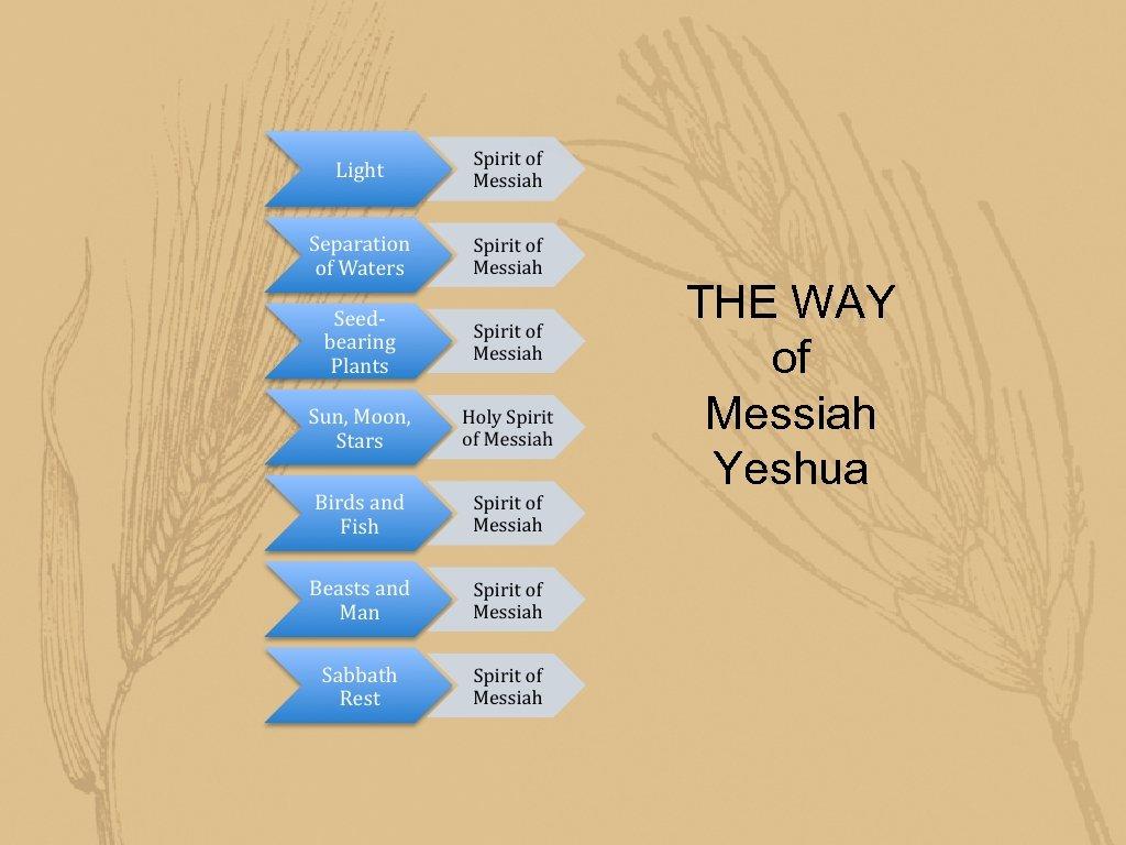 THE WAY of Messiah Yeshua