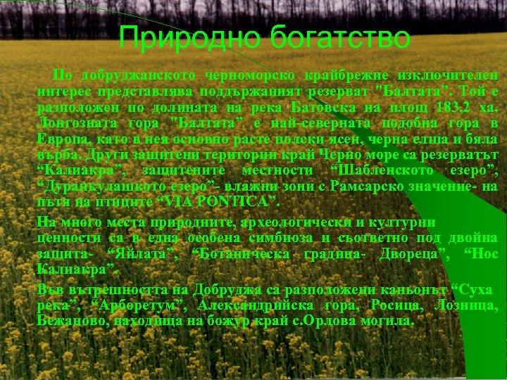 Природно богатство По добруджанското черноморско крайбрежие изключителен интерес представлява поддържаният резерват