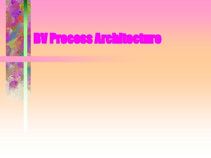 BV Process Architecture