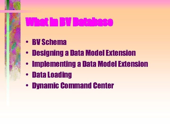 What in BV Database • • • BV Schema Designing a Data Model Extension