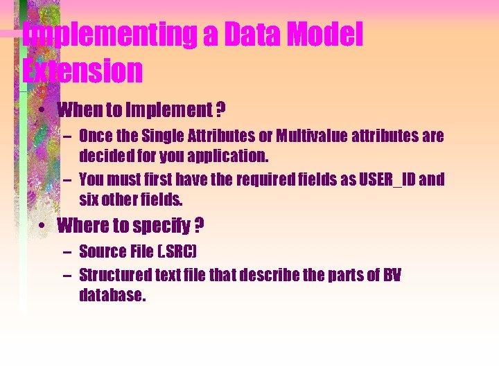 Implementing a Data Model Extension • When to Implement ? – Once the Single
