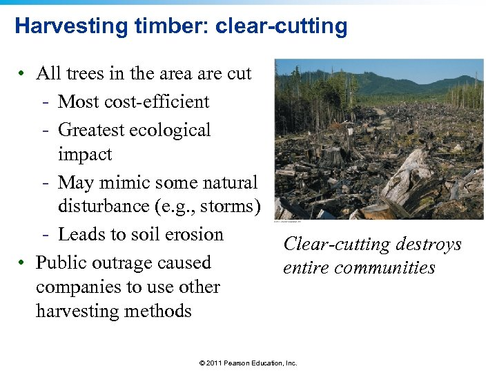 Harvesting timber: clear-cutting • All trees in the area are cut - Most cost-efficient