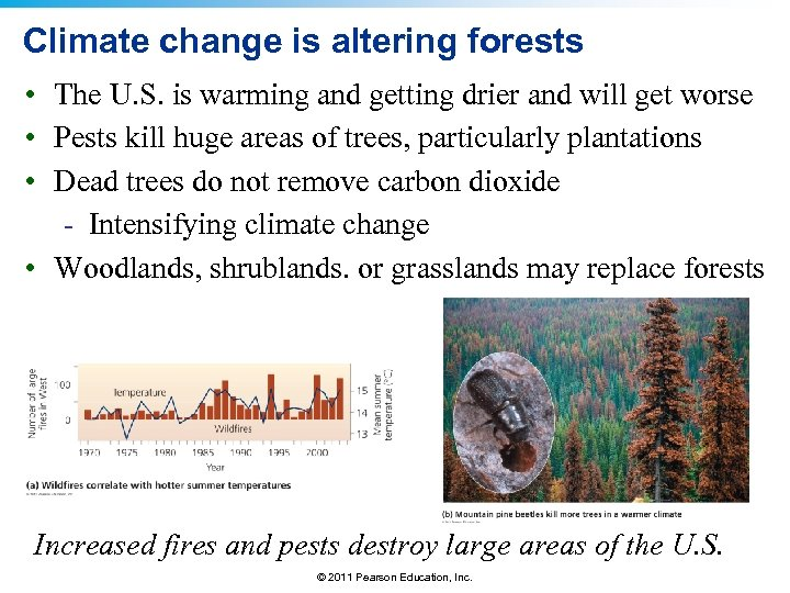 Climate change is altering forests • The U. S. is warming and getting drier