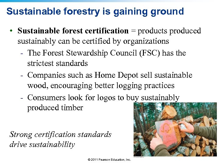 Sustainable forestry is gaining ground • Sustainable forest certification = products produced sustainably can