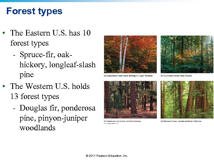 Forest types • The Eastern U. S. has 10 forest types - Spruce-fir, oakhickory,