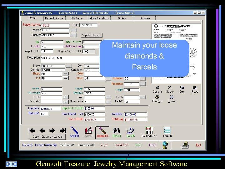 Maintain your loose diamonds & Parcels Gemsoft Treasure Jewelry Management Software
