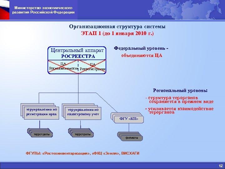 Министерство экономического развития Российской Федерации Организационная структура системы ЭТАП 1 (до 1 января 2010