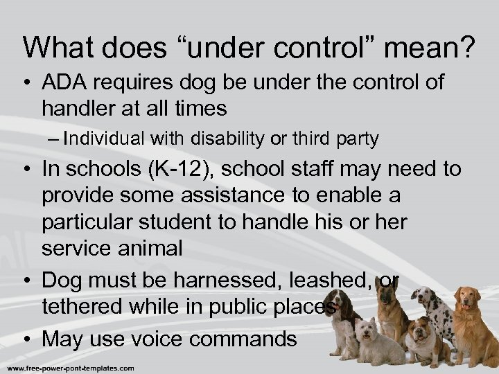 "What does ""under control"" mean? • ADA requires dog be under the control of"