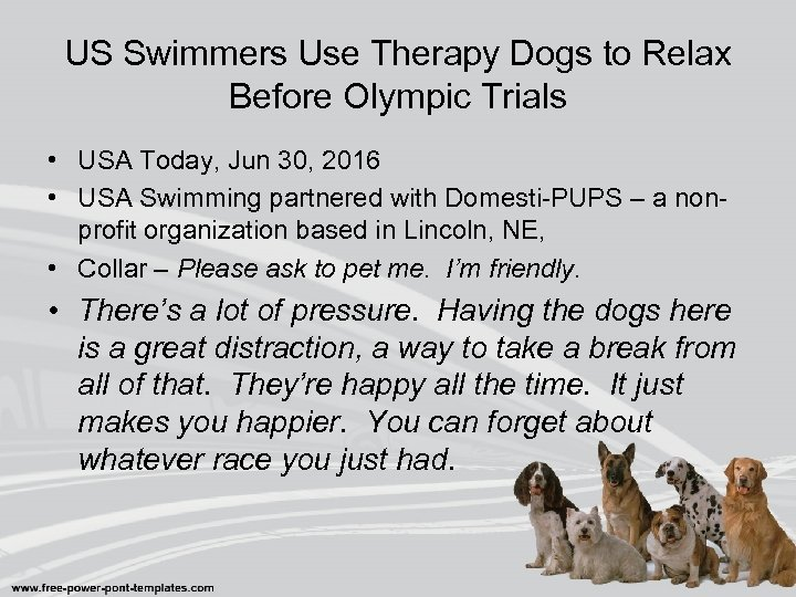 US Swimmers Use Therapy Dogs to Relax Before Olympic Trials • USA Today, Jun