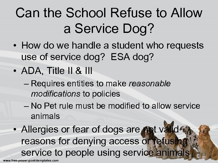 Can the School Refuse to Allow a Service Dog? • How do we handle