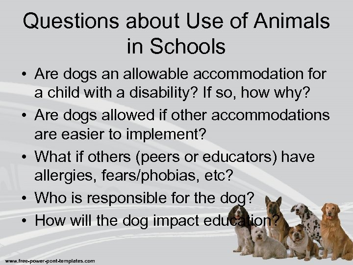 Questions about Use of Animals in Schools • Are dogs an allowable accommodation for