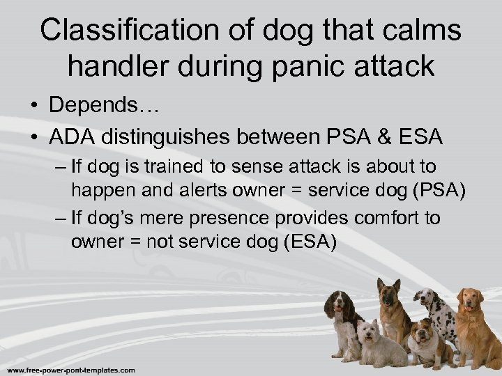 Classification of dog that calms handler during panic attack • Depends… • ADA distinguishes