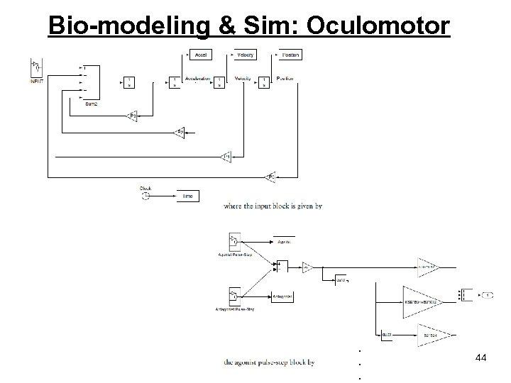 Bio-modeling & Sim: Oculomotor . . . 44