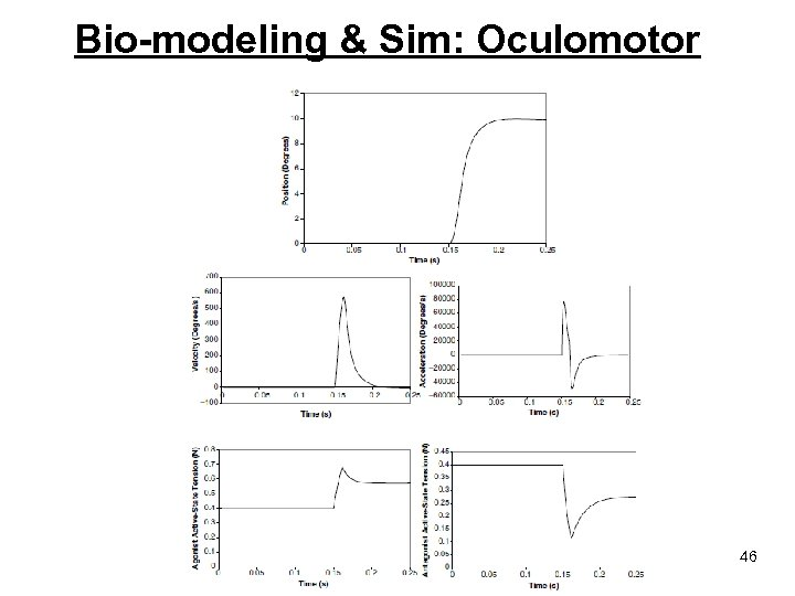 Bio-modeling & Sim: Oculomotor 46