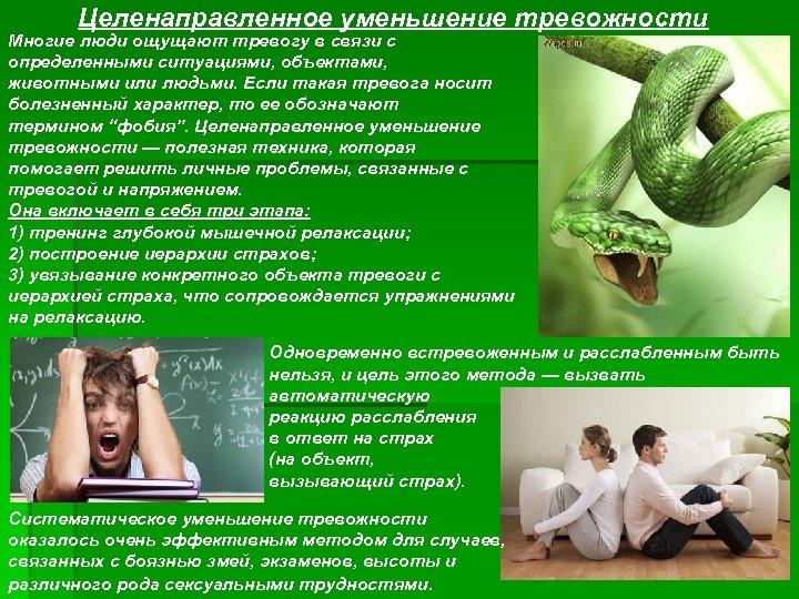 Целенаправленное уменьшение тревожности Многие люди ощущают тревогу в связи с определенными ситуациями, объектами, животными