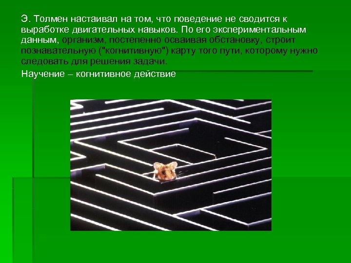 Э. Толмен настаивал на том, что поведение не сводится к выработке двигательных навыков. По