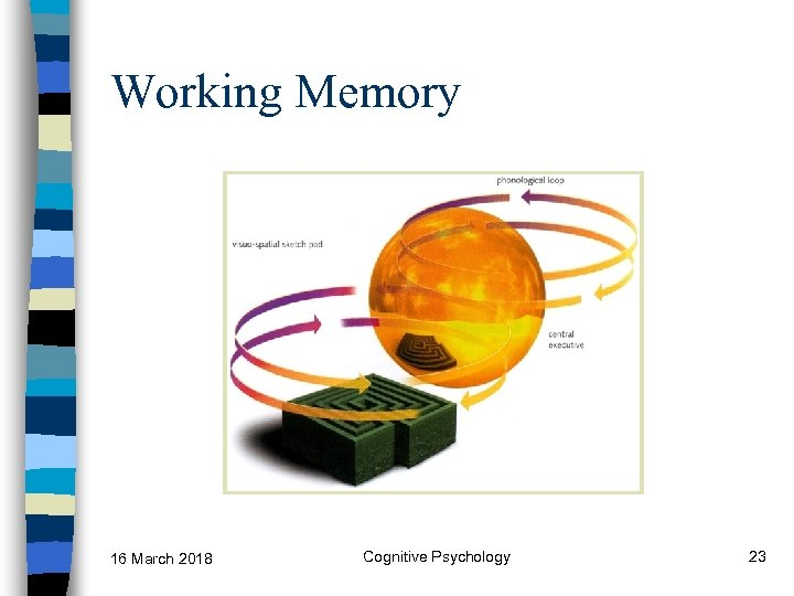 Working Memory 16 March 2018 Cognitive Psychology 23