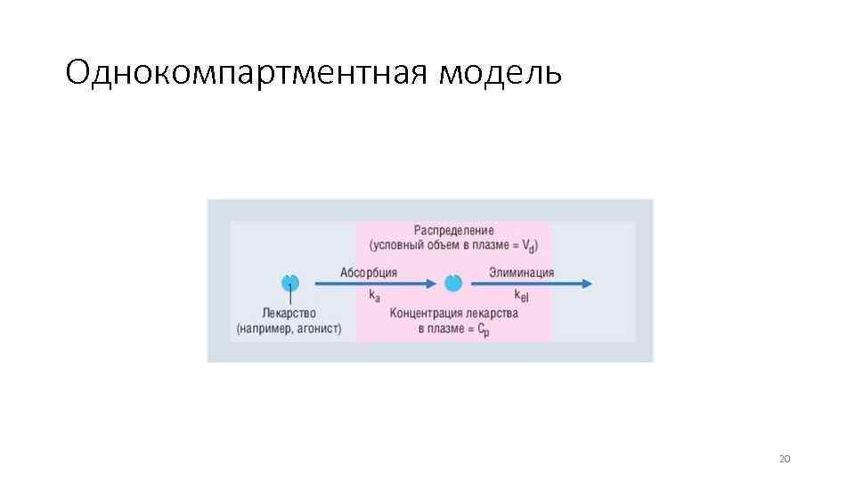 Однокомпартментная модель 20