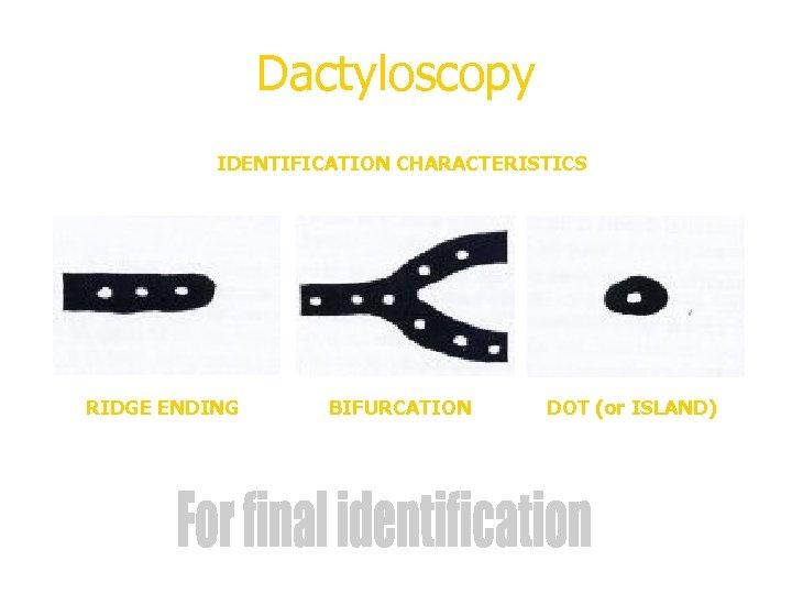 Dactyloscopy IDENTIFICATION CHARACTERISTICS RIDGE ENDING BIFURCATION DOT (or ISLAND)