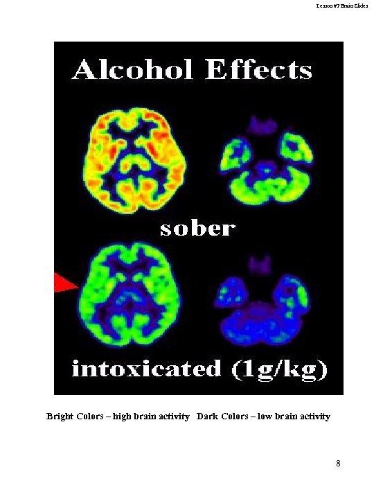 Lesson #2 Brain Slides Bright Colors – high brain activity Dark Colors – low