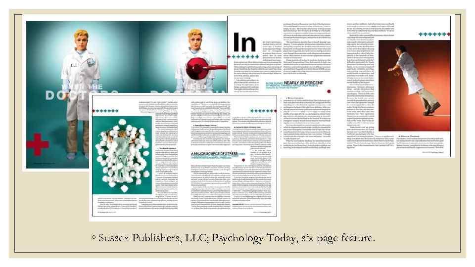 sussex publishers llc