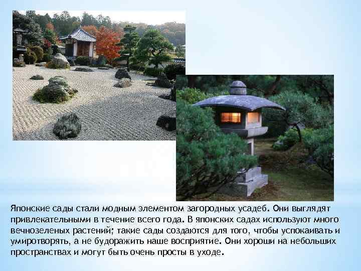 Японские сады стали модным элементом загородных усадеб. Они выглядят привлекательными в течение всего года.