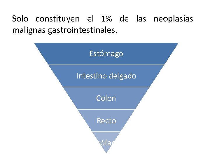 Solo constituyen el 1% de las neoplasias malignas gastrointestinales. Estómago Intestino delgado Colon Recto
