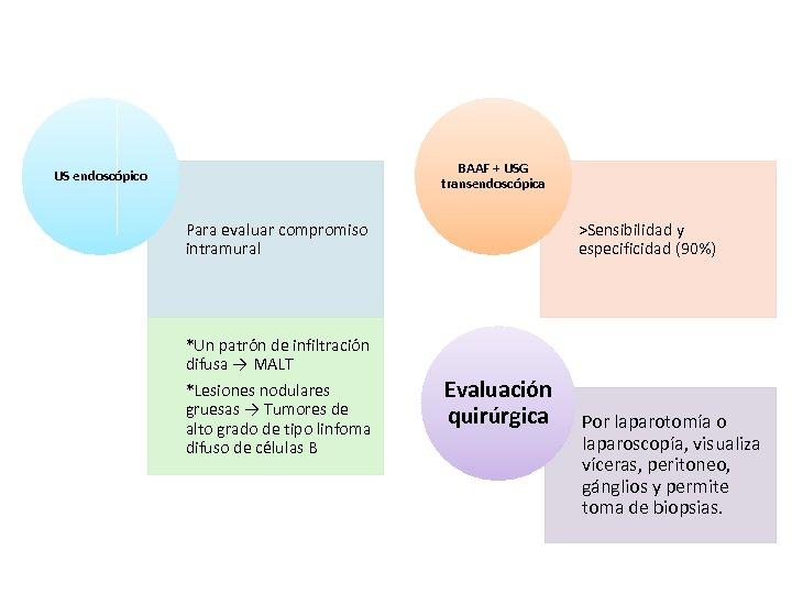 BAAF + USG transendoscópica US endoscópico Para evaluar compromiso intramural *Un patrón de infiltración