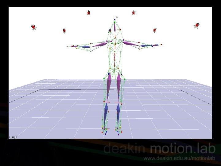Cortex file – tendu segment