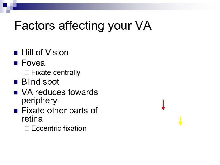 Factors affecting your VA n n Hill of Vision Fovea ¨ Fixate n n